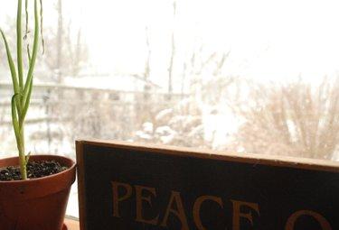 Peace3_2